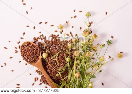 Close Up Flax Seeds In A Wooden Spoon. Composition With , Flax Seeds, And Plants On White Background