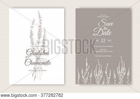 Vector Wedding Invitations Set With Lavender Flowers. Romantic Tender Floral Design For Wedding Invi