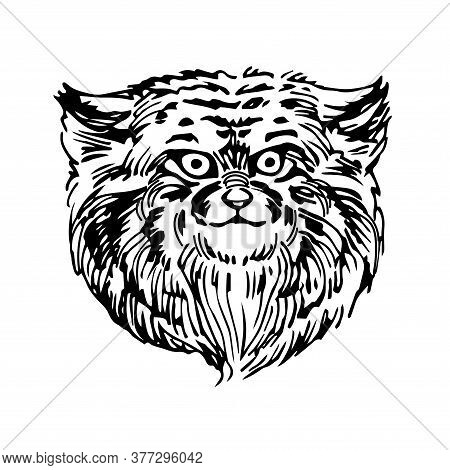 Head Of The Cat Manul, A Wild Rare Asian Animal, For Logo Or Emblem, Vector Illustration With Black