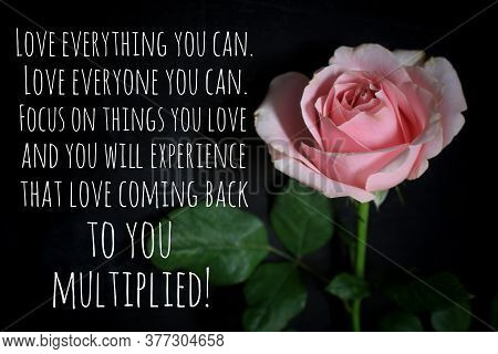 Inspirational Quote - Love Everything And Everyone You Can. Focus On Things You Love And You Will Ex