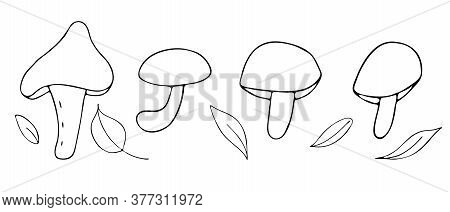 Autumn Forest Objects - Mushrooms And Leaves, Freehand Drawing, Vector Set In Doodle Style, Coloring
