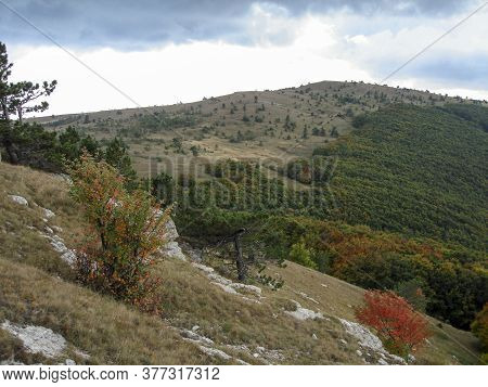 Mountainside Covered By Autumn Forest On A Cloudy Day