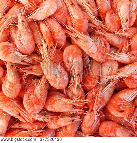 Background A Lot Of Shrimp. Top View.