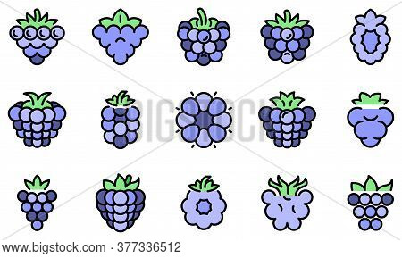 Blackberry Icons Set. Outline Set Of Blackberry Vector Icons Thin Line Color Flat On White