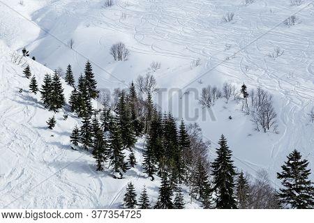 Ski Tracks On White Snow In Winter Mountains. Mountain Slope In Rosa Khutor Ski Resort In Russia. Ho