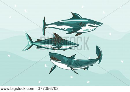 Hand Drawn Vector Abstract Stock Flat Graphic Illustration With Underwater Swimming Shark Drawing Co