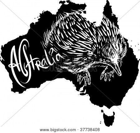 Echidna As Australian Symbol