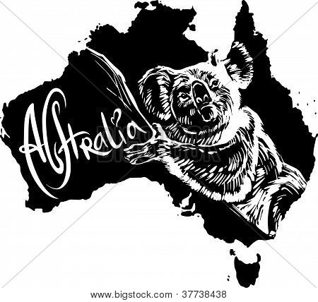 Koala As Australian Symbol