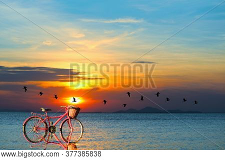 Reflection Of Bicycle On Water And Sunset On Sea And Silhouette Birds Flying To Home Over Sea Surfac