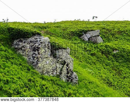 Polonyna Runa, Transcarpathian Region. Mountains In Spring And Summer. Green Hills And Blue Sky. Roc