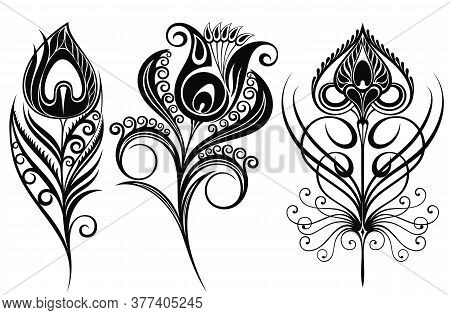 Beautiful Collection Of Vector Decorative Tattoo Peacock Feathers