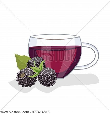 Tea With Blackberries In A Glass Cup, Blackberries Lie Nearby. Vector Illustration