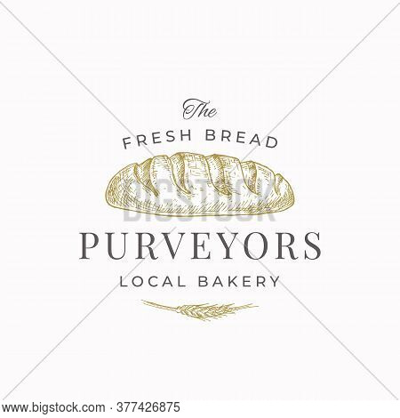 Fresh Bread Purveyors Abstract Sign, Symbol Or Logo Template. Hand Drawn Loaf And Wheat With Premium