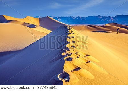 Tourist photographer with a photo bag is walking among the dunes. USA. Death Valley. Desert morning in Mesquite Flat Sand Dunes. Various traces are visible along the crest of the dune.