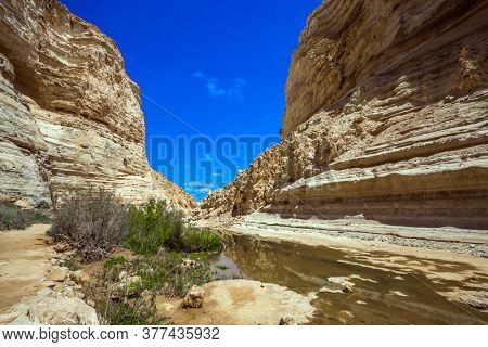 Israel. The ravine is formed by the waters of the Qing River. The magnificent gorge Ein Avdat is the most beautiful in the Negev desert. Start route. The walls of the gorge are corroded by caves
