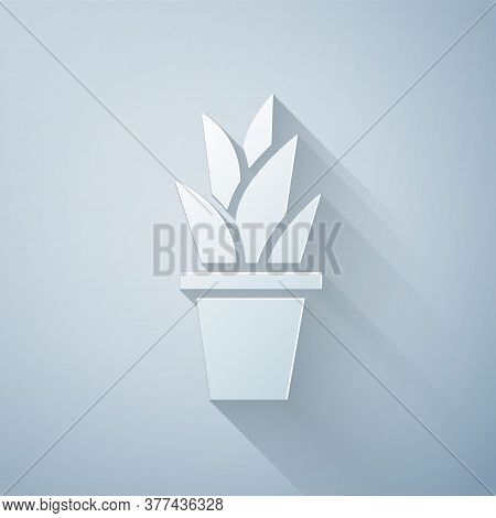 Paper Cut Plant In Pot Icon Isolated On Grey Background. Plant Growing In A Pot. Potted Plant Sign.