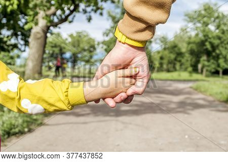 A Man's Hand Holds The Hand Of A Little Girl Against The Background Of A Forest Landscape