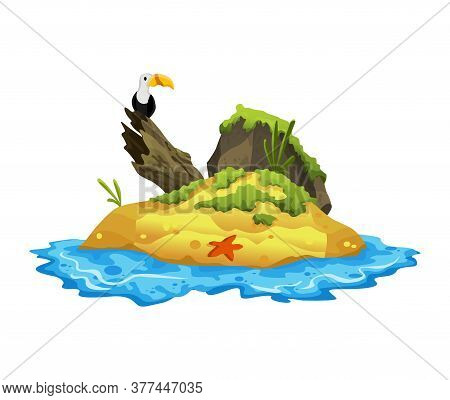 Tropical Island. Tropical Coast With Vulture, Starfish And Sea Waves. Summer Landscape Of The Tropic