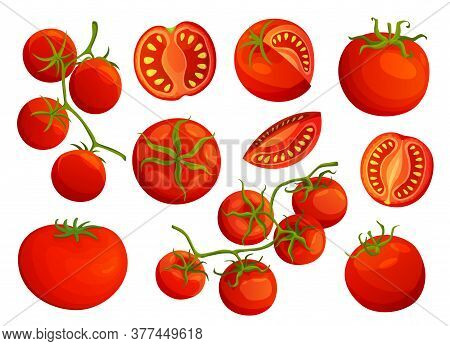 Tomatoes. Collection Of Chopped Tomatoes Isolated On White Background. Vector Fresh Red Tomatoes. Si