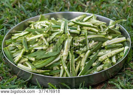 Okra Lady Finger Cuts In Slice, Ready For Cook, Close Up View