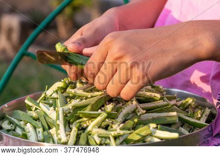 Young Girl Cutting Okra Lady Finger With Knife, Preparing Bhindi For Cooking
