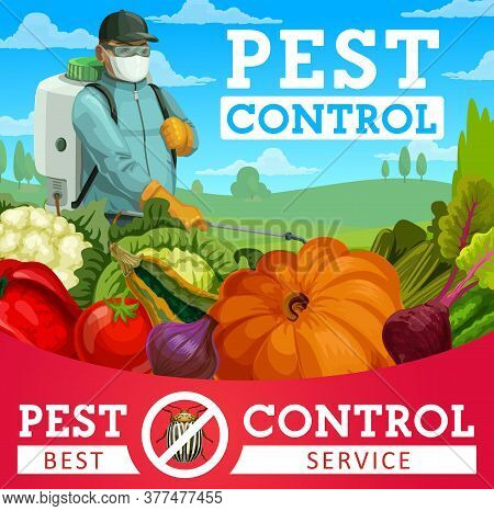 Agriculture Pest Control Vector Design With Colorado Beetle Insect, Vegetables And Pest Control Serv
