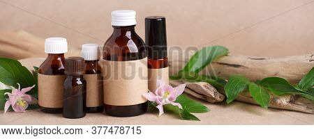 Herbal Natural Facial Cosmetic Products Set With Herbs On Paper Craft Background, Top View. Branding