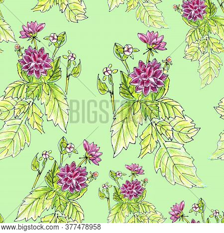 Seamless Pattern Of Flowers And Inflorescences Of Pink Dahlias On A Green Background