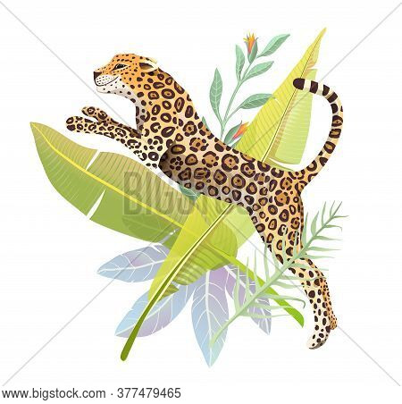 Realistic Hand Drawn Jaguar Jump In Jungle Forest Vector Isolated Design For T Shirt Print Or Poster