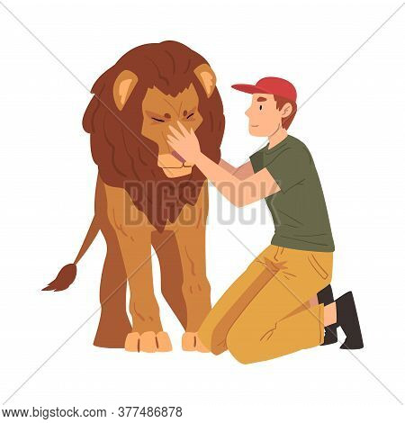 Male Zoo Worker Stroking Lion, Veterinarian Or Professional Zookeeper Character Caring Of Wild Anima
