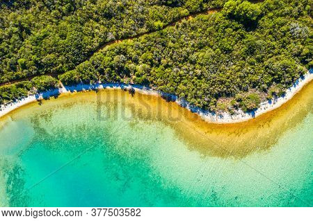 Aerial Overhead View Of Adriatic Sea Shore In Croatia, Dugi Otok Island. Pine Woods, Long Hidden Sec