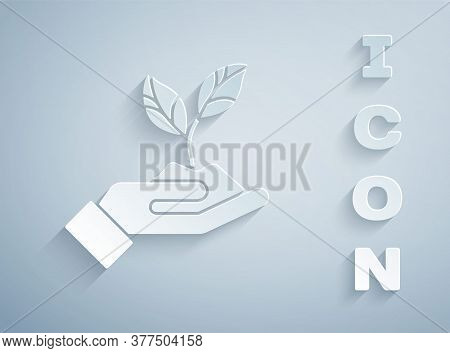 Paper Cut Plant In Hand Of Environmental Protection Icon Isolated On Grey Background. Seed And Seedl