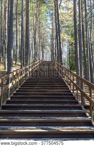 The Path To The Top, A Wooden Staircase Along The Middle Of The Forest. Concept, Path To Success, Ov