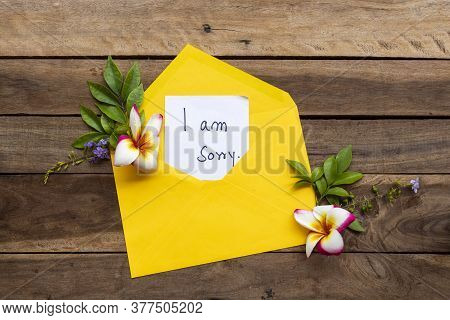 I Am Sorry Message Card Handwriting In Yellow Envelope With Flowers Frangipani Arrangement Flat Lay