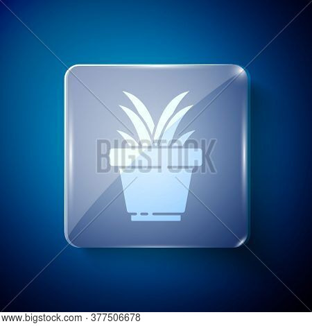 White Flower In Pot Icon Isolated On Blue Background. Plant Growing In A Pot. Potted Plant Sign. Squ