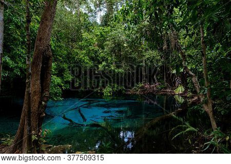 Blue Or Emerald Pool In National Park Sa Morakot, Krabi, Thailand.