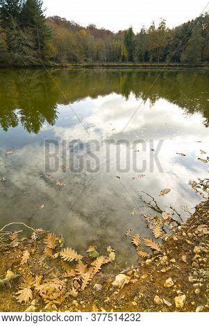 Lake In The Foresta Umbra, Gargano, Apulia, Italy