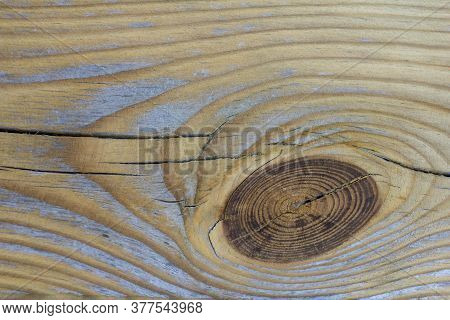 Wood Texture With A Knot. Pine. Background In Provence Style. Tree Structure Knot Wood Board Pattern