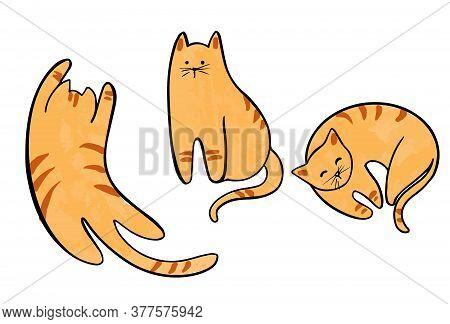Vector Set Of Funny Cats Lying, Sitting, Stretching Itself, Sleeping. Flat Cartoon Vector Illustrati
