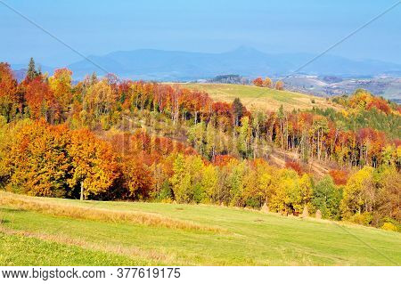 Mountain Landscape In Autumn. Forest In Fall Colors. Wonderful Nature Scenery On A Sunny Day. Meadow