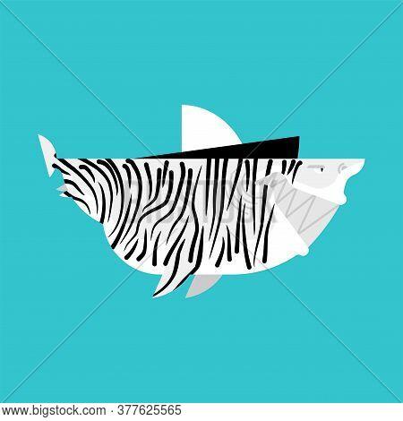 Zebra Shark Isolated. Sea Animal Predator. Vector Illustration