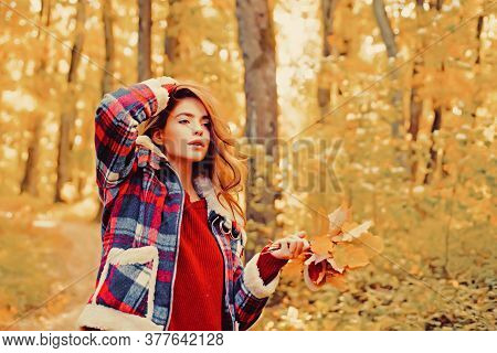 Autumn Woman In Autumn Park With Red Pullover. Autumn Girl. Art Work Of Romantic Girl. Warm Sunny We