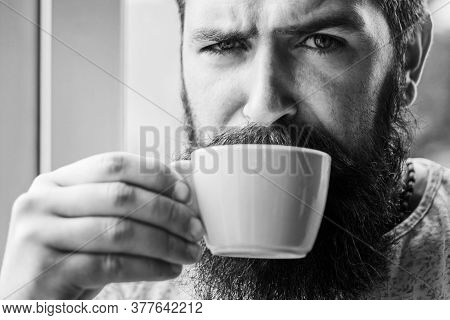 Grumpy Looking Bearded Man Drinking Morning Cup Of Coffee Near Window. Hipster Man Having Cup Of Ame