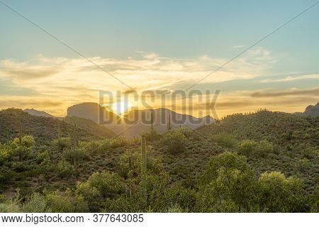 The Warm Glow Of A Setting Sun The In Sonoran Desert Of Arizona With Saguaro Cacti In The Foreground