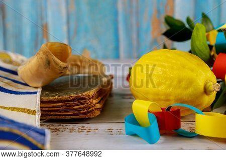 Jewish Religious Symbol Festival Of Sukkot. Traditional Symbols The Four Species : Etrog, Lulav, Had