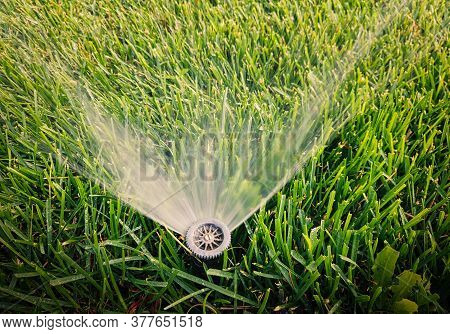 Closeup Of Irrigation System In Garden. Sprinkler Is Spreading Water All Over The Grass. Copyspace O