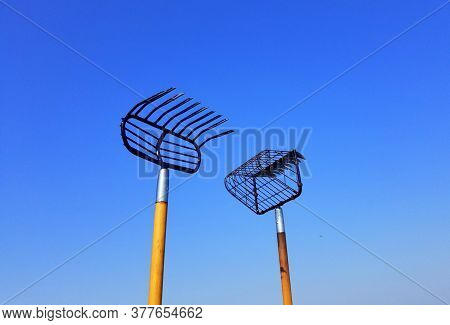 Two Different Size Of Clamming Rake And Shovel