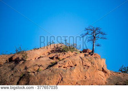 Rocky Landscape Scenery Of Colorado Springs, Colorado