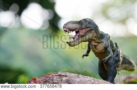 Tyrannosaurus Rex Dinosaurs Toy On Nature Background.