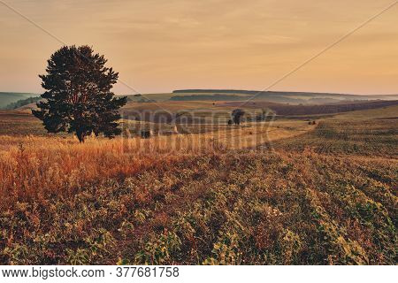 Panoramic Landscape Of Central Russia Agricultural Countryside With Hills And Country Road. Summer L